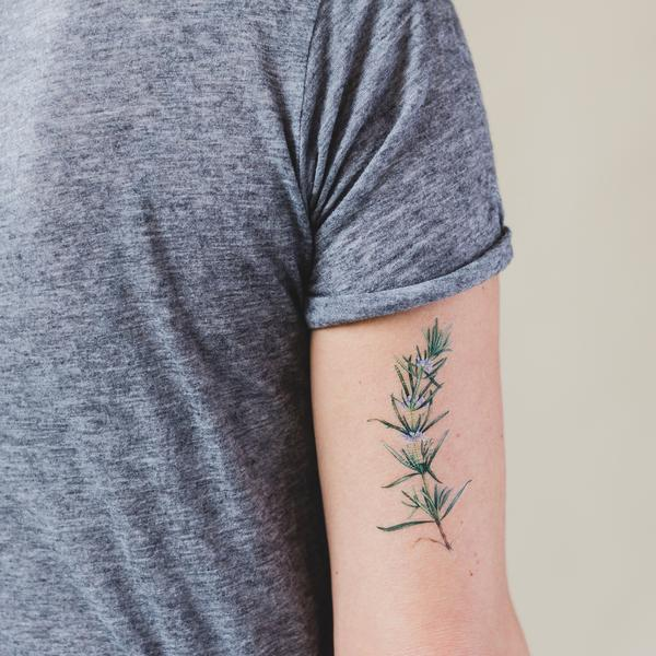 Temporäre Tattoos von Tattly - Rosmarin