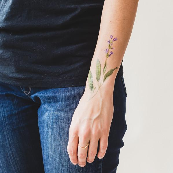 Temporäre Tattoos von Tattly - Salbei